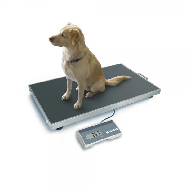 Mobile Hundewaagen - Veterinärwaagen für Tierärzte